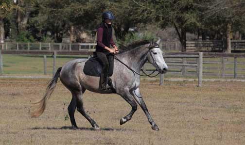 K-Nat-riding-7x4.jpg