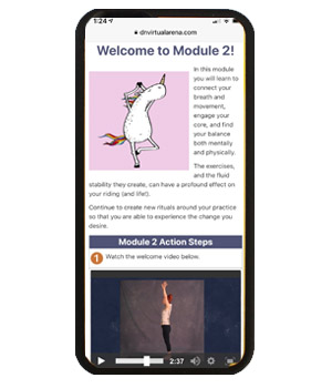 Mobile view