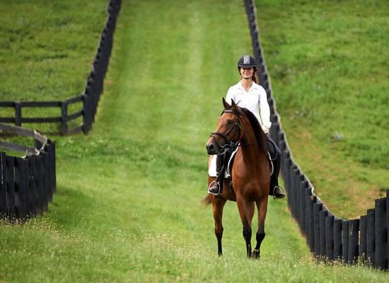 sylvia riding in grassy lane
