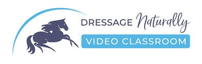 video-classroom-colour-bar-horiz-med